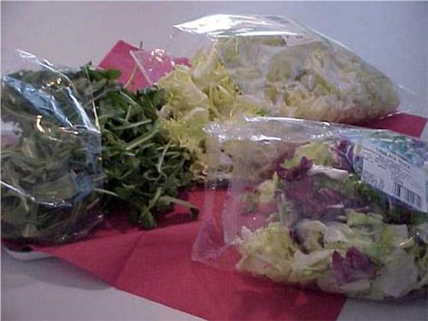 Deumidificatori-asciugatura-verdura